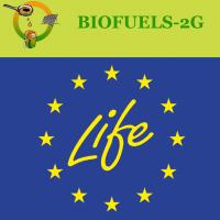 BIOFUELS-2G